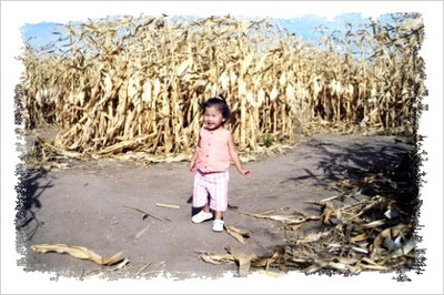 1005_loe_in_the_corn_maze_2