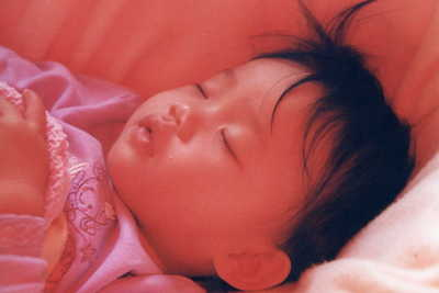 China_loe_sleeping_in_filtered_light